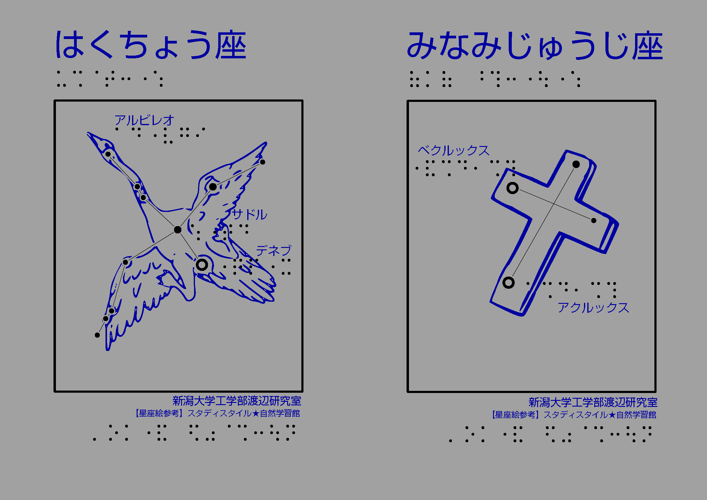 白鳥座と南十字座の星座絵