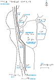 長崎浦上の触地図